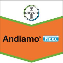 Andiamo® Flexx