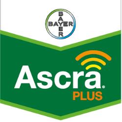 Ascra® Plus