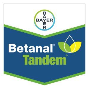 Betanal® Tandem