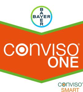 Conviso® ONE