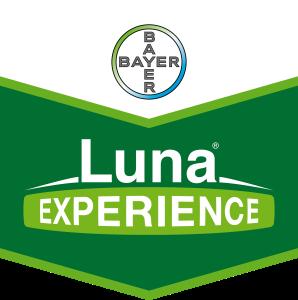 Luna® Experience