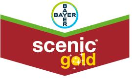 Scenic® Gold