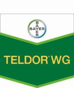 Teldor® WG