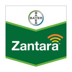 Zantara®
