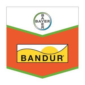 Bandur®