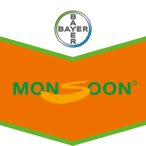 Monsoon®